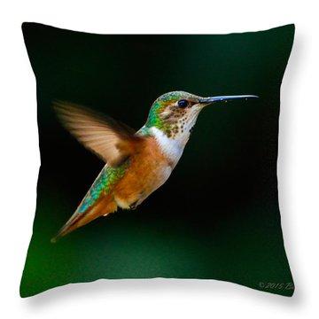 Hovering Allen's Hummingbird Throw Pillow