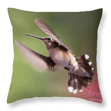 Hovering Hummer 2 Throw Pillow