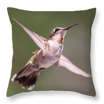 Hovering Hummer 4 Throw Pillow
