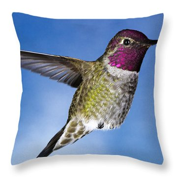 Hovering In Sky Throw Pillow by William Lee