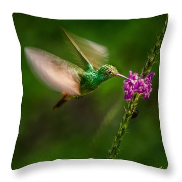 Throw Pillow featuring the photograph Hovering In The Vervain  by Rikk Flohr