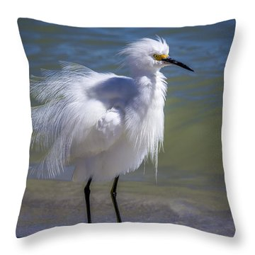 How Do I Look Throw Pillow