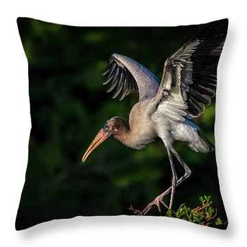 How Do These Things Work Throw Pillow by Cyndy Doty