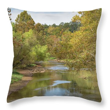 Throw Pillow featuring the photograph How Green The Valley by John M Bailey