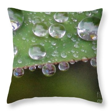How Many Raindrops Can A Leaf Holds. Throw Pillow by Kim Tran