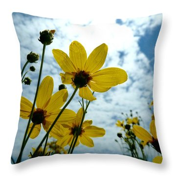 How Summer Feels Throw Pillow by Tim Good