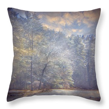 Howe State Park In Winter Throw Pillow