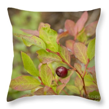 Huckleberry Throw Pillow by Idaho Scenic Images Linda Lantzy