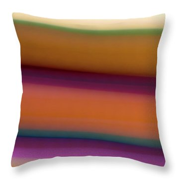 Huckleberry  Throw Pillow