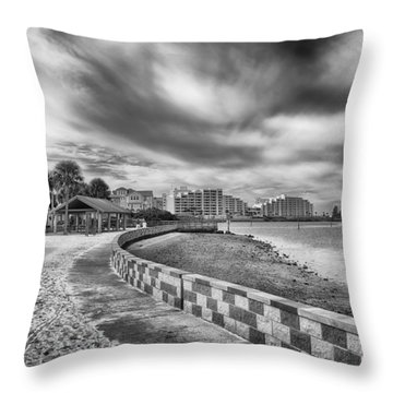 Throw Pillow featuring the photograph Hudson Beach by Howard Salmon