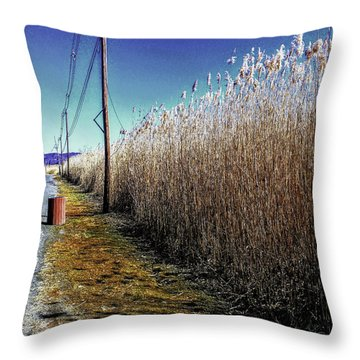Hudson River Winter Walk Throw Pillow