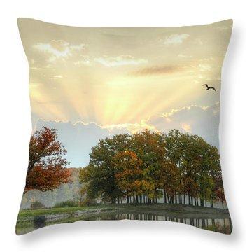 Throw Pillow featuring the photograph Hudson Springs Morning by Ann Bridges