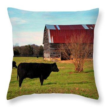 Huffacker Farm Throw Pillow