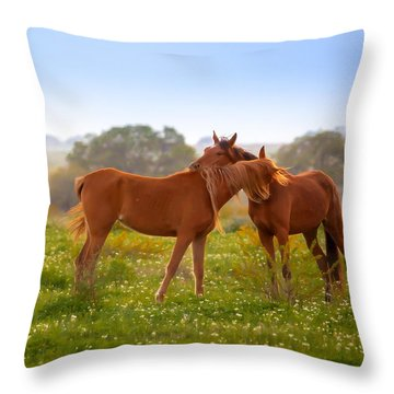 Throw Pillow featuring the photograph Hug It Out by Melinda Ledsome