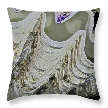 Huge Clam Shell Throw Pillow