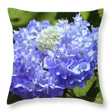 Huge Hydrangea Throw Pillow by Al Powell Photography USA