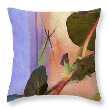 Giant Orb Spider Throw Pillow