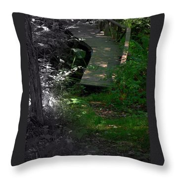 Throw Pillow featuring the photograph Hugh's Bridge by Richard Ricci