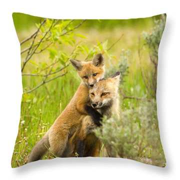 Hugs Throw Pillow by Aaron Whittemore