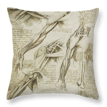 Human Arm Study Throw Pillow