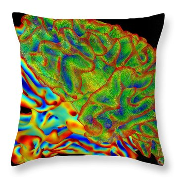 Human Brain, Surface Mapping Throw Pillow