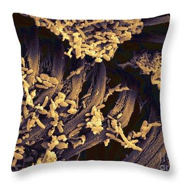 Human Feces, Sem Throw Pillow