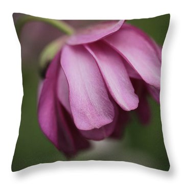 Throw Pillow featuring the photograph Humble Beginnings by Connie Handscomb