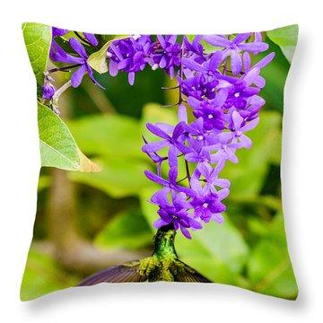 Humming Bird Flowers Throw Pillow
