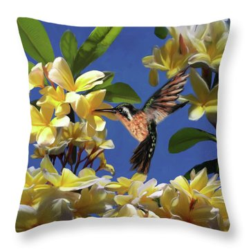 Hummingbird 01 Throw Pillow