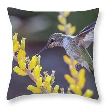 Hummingbird 6750-041818-1cr Throw Pillow