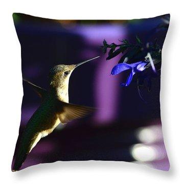Hummingbird And Blue Flower Throw Pillow