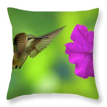 Hummingbird And Flower Throw Pillow