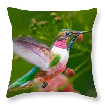 Hummingbird And Flower Painting Throw Pillow