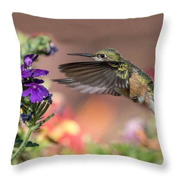 Hummingbird And Purple Flower Throw Pillow