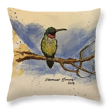 Hummingbird At Rest Throw Pillow