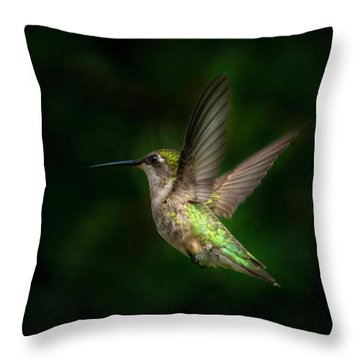 Hummingbird B Throw Pillow
