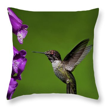 Throw Pillow featuring the photograph Hummingbird Ballet by Lara Ellis