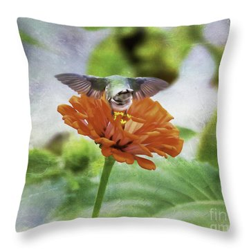 Hummingbird Bow Throw Pillow