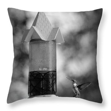 Hummingbird - Bw Throw Pillow