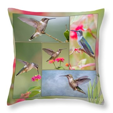 Hummingbird Collage Throw Pillow by Bonnie Barry