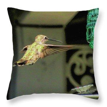 Hummingbird Coming In Throw Pillow