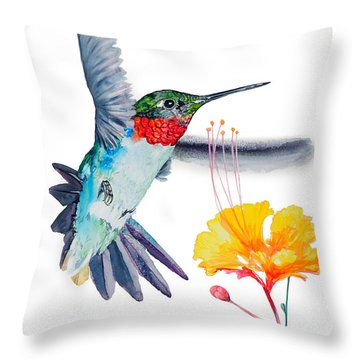 Da169 Hummingbird Flittering Daniel Adams Throw Pillow