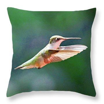Hummingbird Flying Throw Pillow