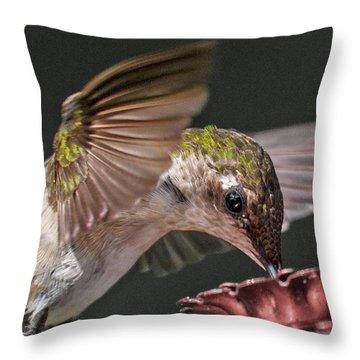 Hummingbird Graceful Little Lady Throw Pillow