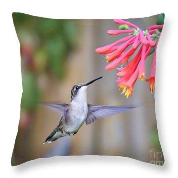 Hummingbird Happiness 2 Throw Pillow