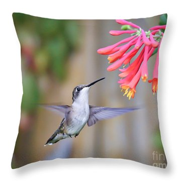 Hummingbird Happiness 2 Throw Pillow