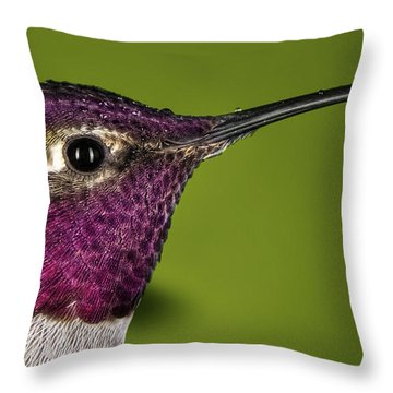 Hummingbird Head Shot With Raindrops Throw Pillow