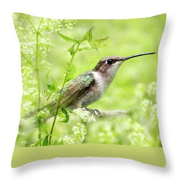 Hummingbird Hiding In Flowers Throw Pillow by Christina Rollo