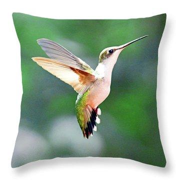Throw Pillow featuring the photograph Hummingbird Hovering by Meta Gatschenberger