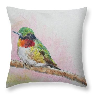 Hummingbird II Throw Pillow